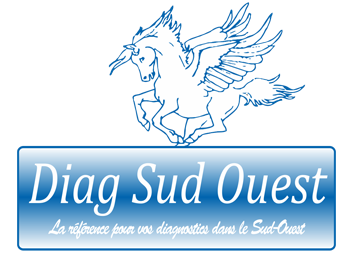 diagnostic immobilier sud ouest